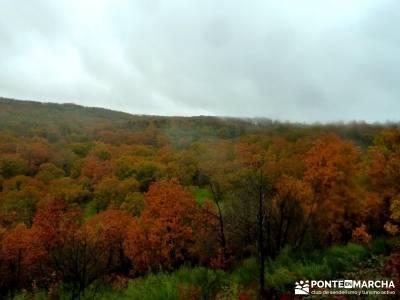 Senda Viriato; Sierra San Vicente; excursiones valle de aran senderismo en ronda nacimiento del rio